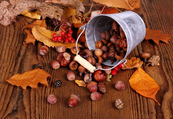 Zinc bucket with distributed acorn, chestnut and rosehip