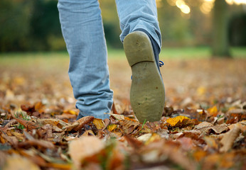 Walking with boots on autumn leaves