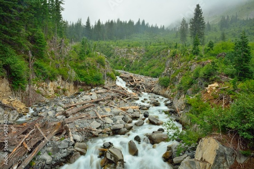 Beautiful creek in Mount Rainier and log jam