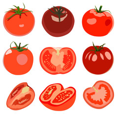 Set of Tomato. Isolated on white