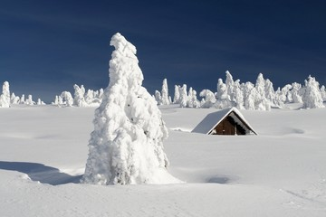 Snowy Plain with a Snowbound Hut