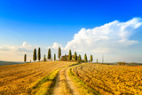 Tuscany, farmland, cypress trees and road. Siena, Italy.