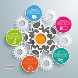 Colored Flower Infographic White Gears