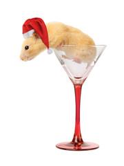 Hamster in glass