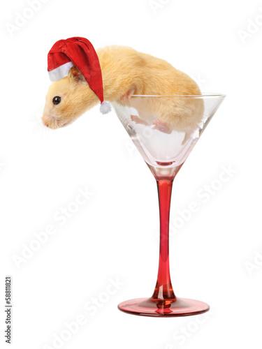 Staande foto Dragen Hamster in glass