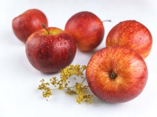 Rote Äpfel auf weiß