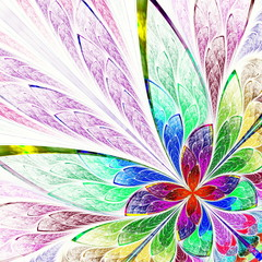 Multicolor beautiful fractal flower.