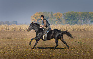 Man riding black horse on field