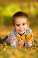 Happy little boy picking leaves