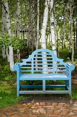 白樺林の中の青いベンチ