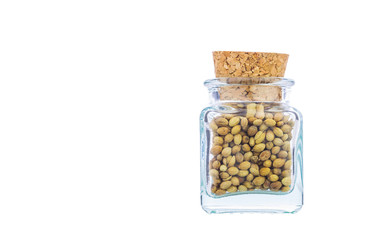 Coriander or cilantro seed spices in a small corked bottle