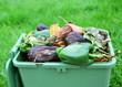 légumes ,déchets pour compost
