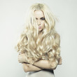Sexy blonde - 58821899