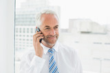Mature businessman using mobile phone in office