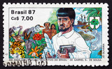 Postage stamp Brazil 1987 Descriptive Treatise of Brazil poster