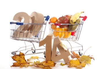 Shoppingcart in autumn