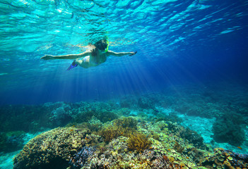 Underwater shot of a woman snorkeling in the sun