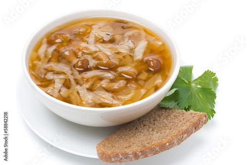 traditional Russian cabbage soup (shchi), isolated