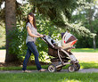 Beautiful Mother Pushing Baby Carriage In Park