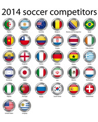 2014 soccer competitors