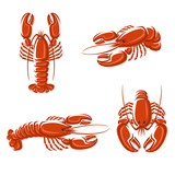 Lobster set. Vector
