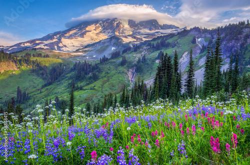 Foto op Plexiglas Landschappen Mt Rainier wildflowers