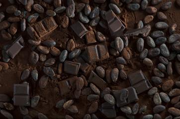 Schokolade mit Kakaobohnen und Kakaopulver