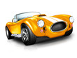 Oldtimer - Luxus Sportwagen