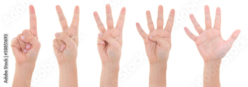 hands counting from one to five isolated on white background