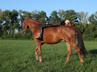 Resting bareback rider on the farm