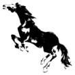 日本画の馬