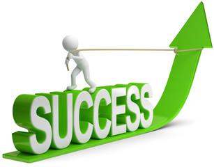 pfeil success