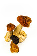 Dried mushrooms on a light background
