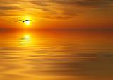 Fototapety en busca de la puesta de sol