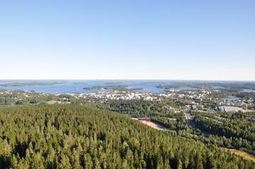 Vista aerea di una foresta, Finlandia