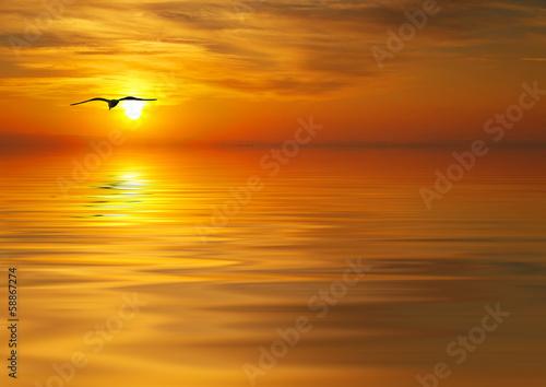 Poster en busca de la puesta de sol
