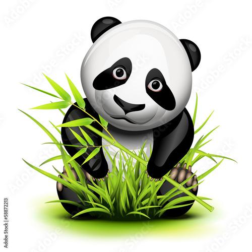Fotobehang Boerderij Little panda