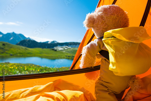 teddy bear camping