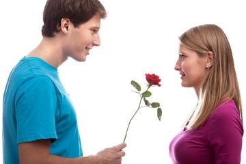 Rose for girlfriend