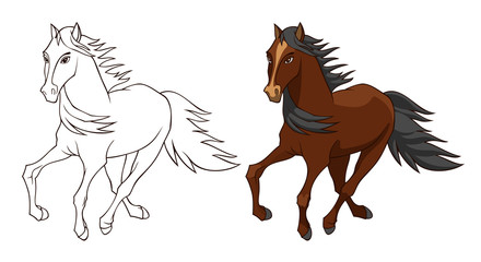 Horse illustration isolated on white background