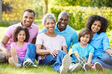 Multi Generation African American Family Sitting In Garden