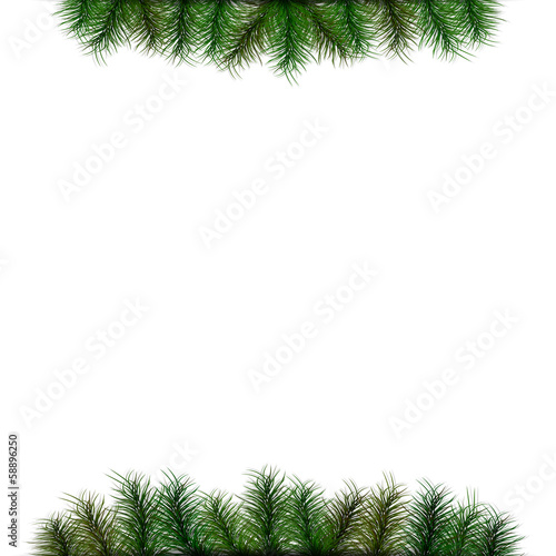 Christmas background with spruce twigs for your text