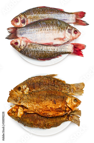 Raw and grilled fish