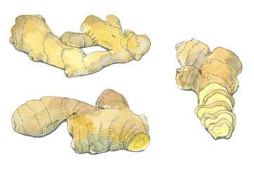 ginger set, watercolor and felt-tip pen