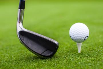 Golf tee ball club driver in green grass course closeup