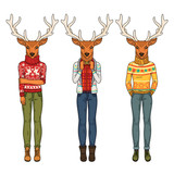 Fashion deers