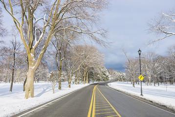 Snowy landscape in winter