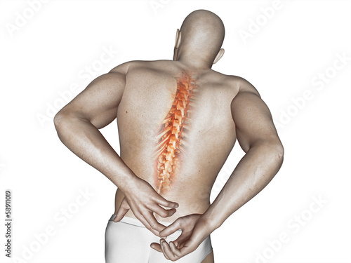 anatomical vision back pain