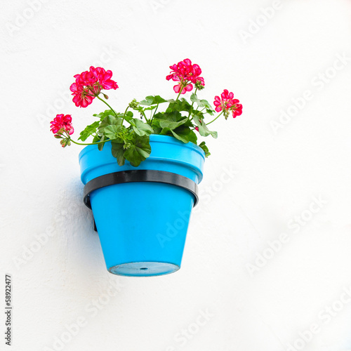 Flower Pot on Wall, Mijas, Andalusia, Spain