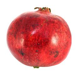 Large red fruit pomegranate